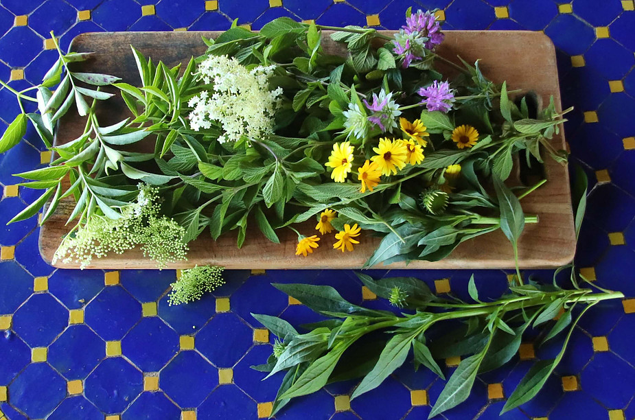 Sacred Garden: Om-Grown Medicinal Herbal Teas