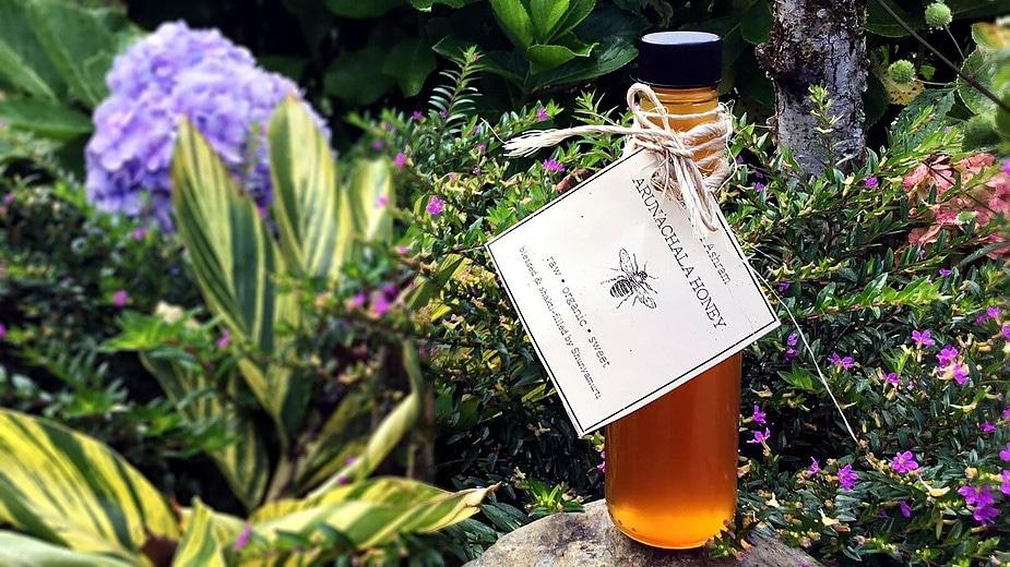 Ashram Beekeeping: Re-Dreaming the Realm of the Honeybee