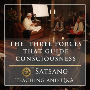 The Three Forces that Guide Consciousness